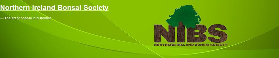 NIBS-Banner-2013.jpg