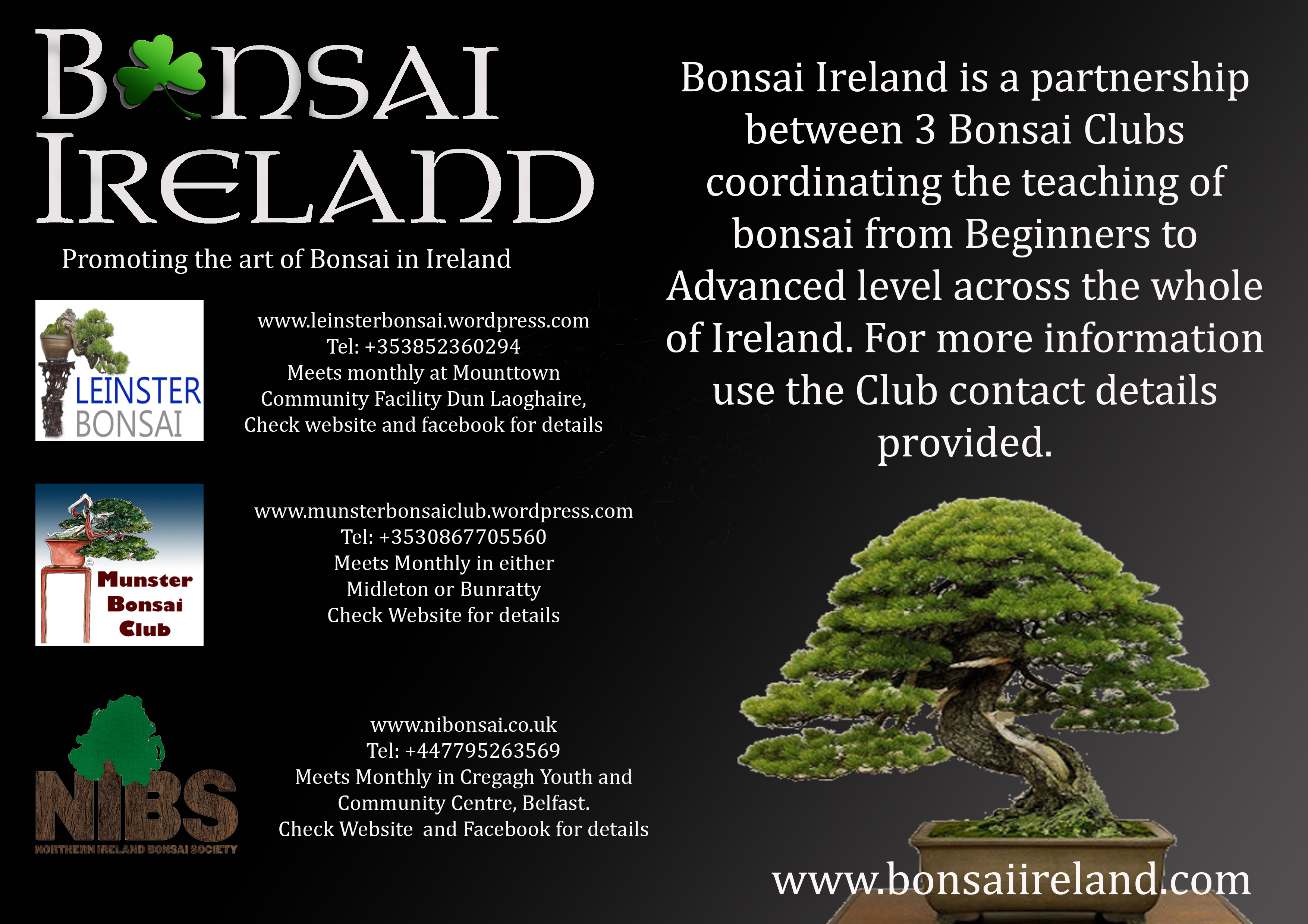 Bonsai Ireland 3 club promotional